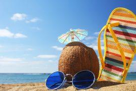 L'été, Le P'tit Rennais travaille mais part aussi en vacances !
