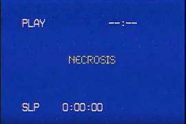 Meloman & Máni ont sorti un nouveau freestyle : «Necrosis»