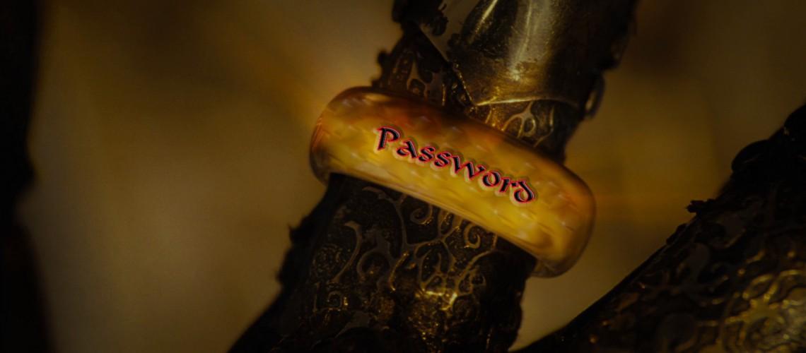 Un mot de passe pour les gouverner tous