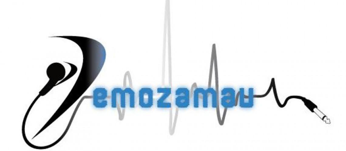 INTERVIEW DE LA SEMAINE #13 : DEMOZAMAU