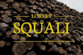 """Loxley présente son nouveau clip : """"Squali"""""""